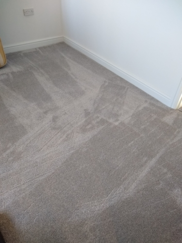 Shimmer Carpet in Grey, Best Selling Range.